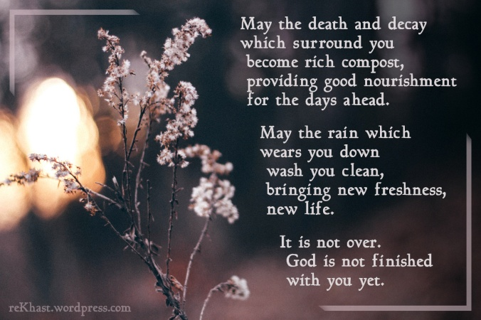 May the death and decay which surround you become rich compost, providing good nourishment for the days ahead. May the rain which wears you down wash you clean, bringing new freshness, new life. It is not over. God is not finished with you yet.